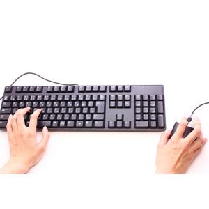 フリー写真, 人体, 手, キーボード(PC), パソコンの周辺機器, マウス, ビジネス, デスクワーク, 白背景