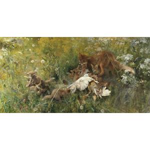 フリー絵画, 動物画, 動物, 哺乳類, 狐(キツネ), 子供(動物), 親子(動物), 食べる(動物), 草むら, 蒲公英(タンポポ), 綿毛
