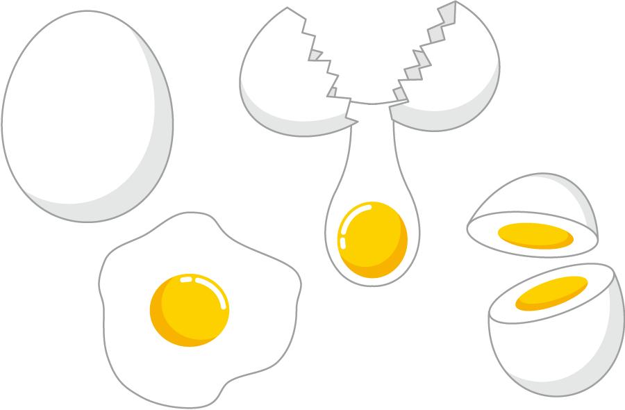 フリーイラスト 生卵、目玉焼き、ゆで卵の4種類のたまごのセット