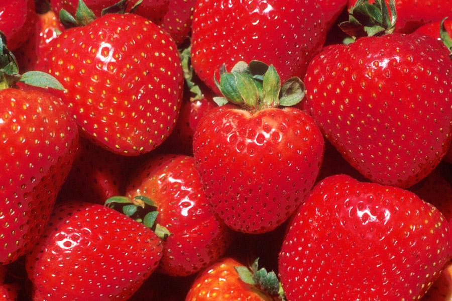 フリー写真 真っ赤なイチゴ
