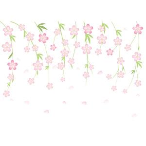 フリーイラスト, ベクター画像, AI, 背景, 植物, 花, しだれ桜, ピンク色の花, 桜(サクラ), 春, 花びら, 桜吹雪