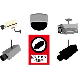 フリーイラスト, ベクター画像, AI, 監視カメラ(防犯カメラ), 犯罪, ビデオカメラ, セキュリティ