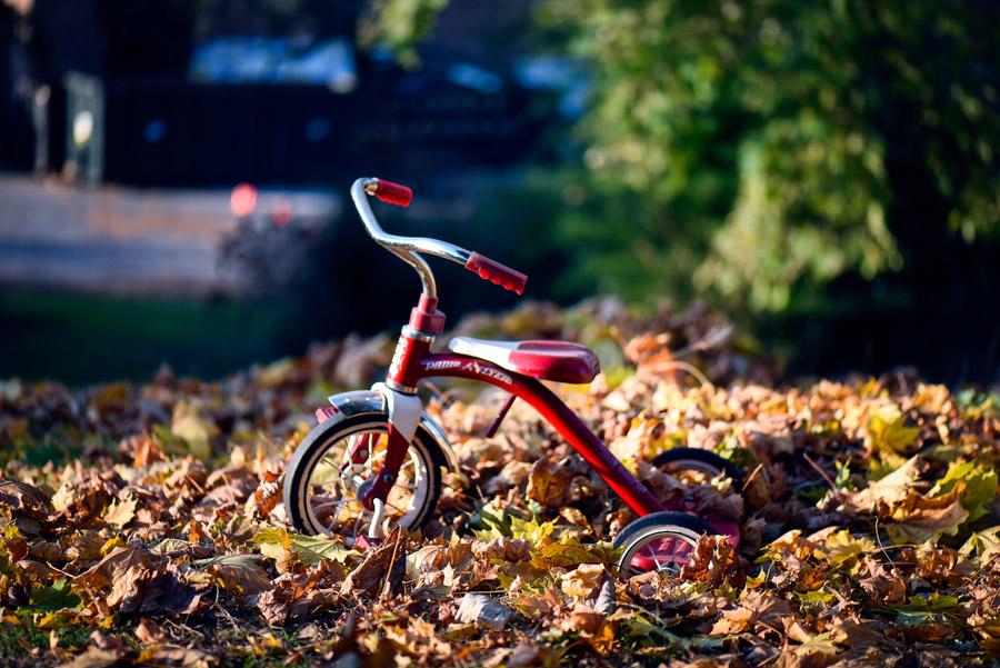 フリー写真 落ち葉と三輪車