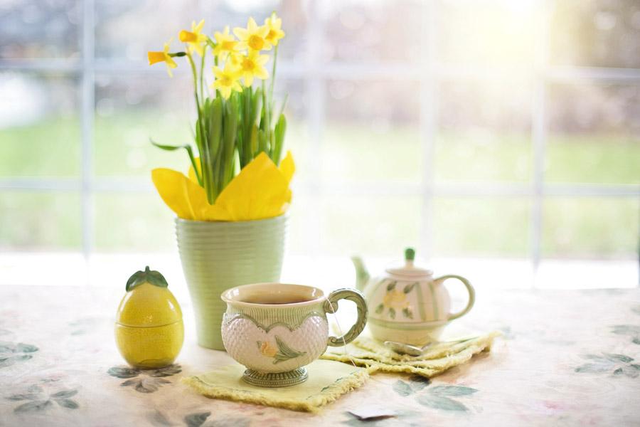 フリー写真 鉢植えのラッパスイセンと紅茶