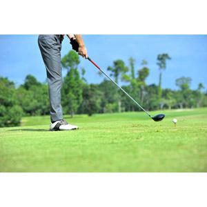 フリー写真, スポーツ, 球技, ゴルフ, ゴルフボール, 芝生, ゴルファー, ゴルフクラブ