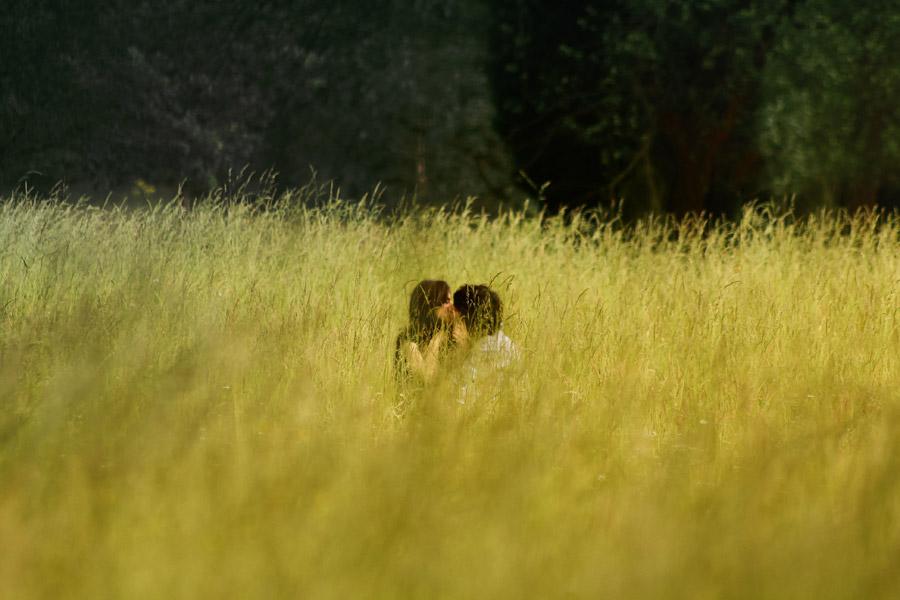 フリー写真 草むらでキスをするカップル