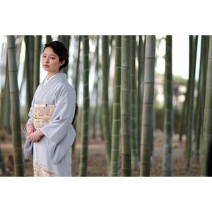 フリー写真, 人物, 女性, アジア人女性, 日本人, 女性(00047), 和服, 着物, 人と風景