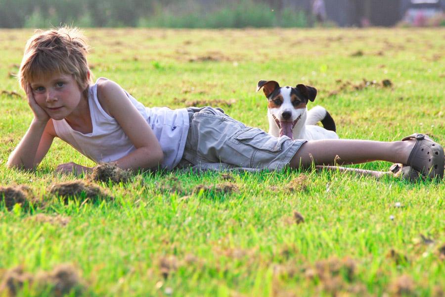 フリー写真 横たわる男の子と犬