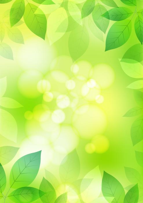 フリーイラスト 縦型の新緑の葉の葉の背景