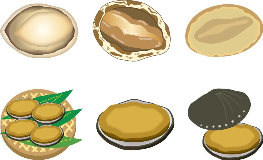フリーイラスト 6種類のアワビのセット