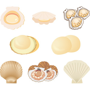 フリーイラスト, ベクター画像, AI, 食べ物(食料), 魚介類, 貝類, 食用貝, 帆立貝(ホタテ貝), 動物