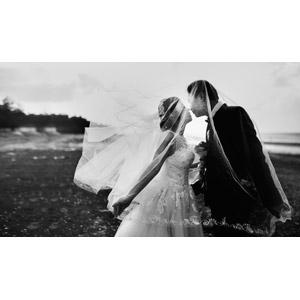 フリー写真, 人物, カップル, 花婿(新郎), 花嫁(新婦), 結婚式(ブライダル), キス(口づけ), ウェディングドレス, ベール, 二人, モノクロ