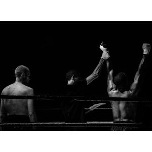 フリー写真, スポーツ, 格闘技, ボクシング, 人物, 三人, 後ろ姿, モノクロ, ガッツポーズ, 喜ぶ(嬉しい), 勝利, 敗北