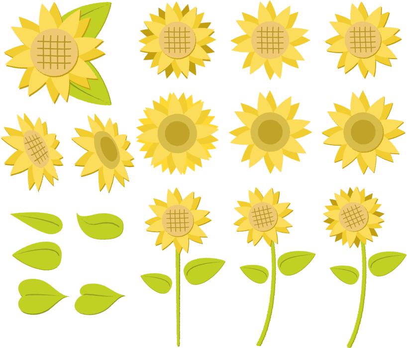 フリーイラスト ひまわりの花と葉のセット