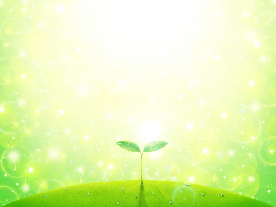 フリーイラスト 輝く光とふたばの新芽