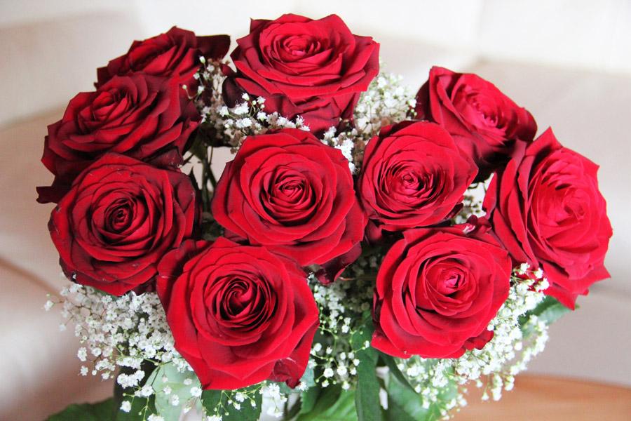 フリー写真 花瓶の中の赤色のバラの花