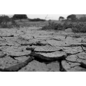 フリー写真, 風景, 自然, 地割れ, モノクロ, 日照り(干ばつ)