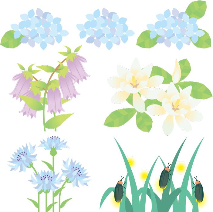 フリーイラスト 6月の花とホタルのセット