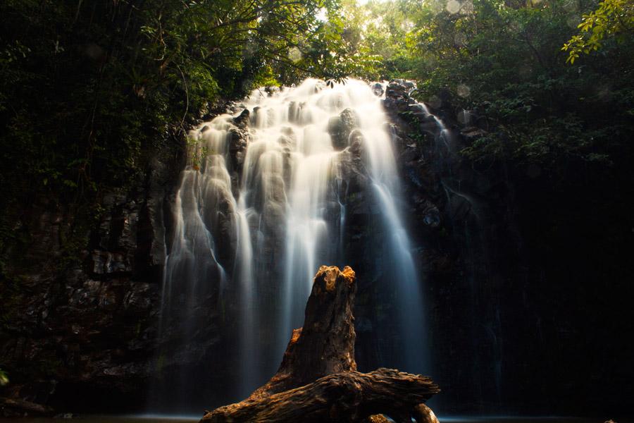 フリー写真 倒木と流れ落ちる滝の風景