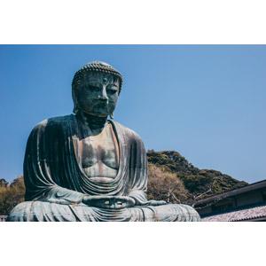 フリー写真, 風景, 彫像, 仏像, 仏教, 鎌倉大仏(長谷の大仏), 高徳院, 神奈川県, 日本の風景