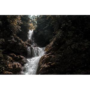 フリー写真, 風景, 自然, 滝, 森林, メキシコの風景