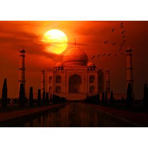 フリー写真, 風景, フォトレタッチ, 建造物, 建築物, 廟, タージ・マハル, 世界遺産, インドの風景, 夕暮れ(夕方), 夕焼け, 夕日, 鳥(トリ), 群れ