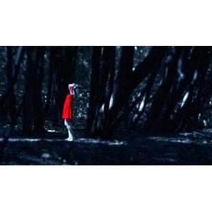 フリー写真, 人物, 女性, 外国人女性, 人と風景, 森林, 目隠し, ドレス