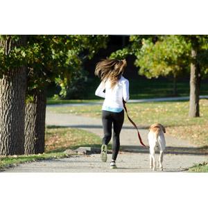 フリー写真, 人物, 女性, 外国人女性, 後ろ姿, 運動, フィジカルトレーニング, ジョギング, 走る, 人と動物, 犬(イヌ), 散歩