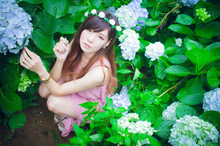 フリー写真 あじさいの花畑でしゃがんでいる女性