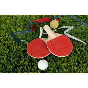 フリー写真, スポーツ, 球技, 卓球(ピンポン), ラケット(卓球), ピン球, 金メダル