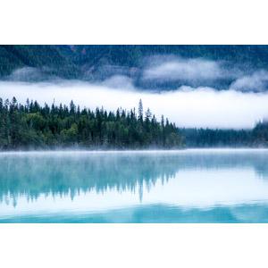 フリー写真, 風景, 自然, 湖, 霧(霞), 森林, カナダの風景
