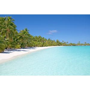 フリー写真, 風景, 自然, ビーチ(砂浜), 海, リゾート, バケーション, クック諸島, ニュージーランドの風景, 椰子(ヤシ), 南国, 青空