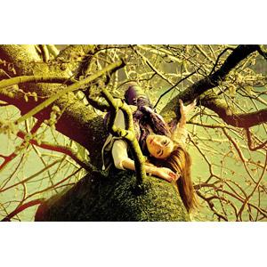 フリー写真, 人物, 女性, 外国人女性, フランス人, 樹木, 寝転ぶ, 仰向け, 人と風景