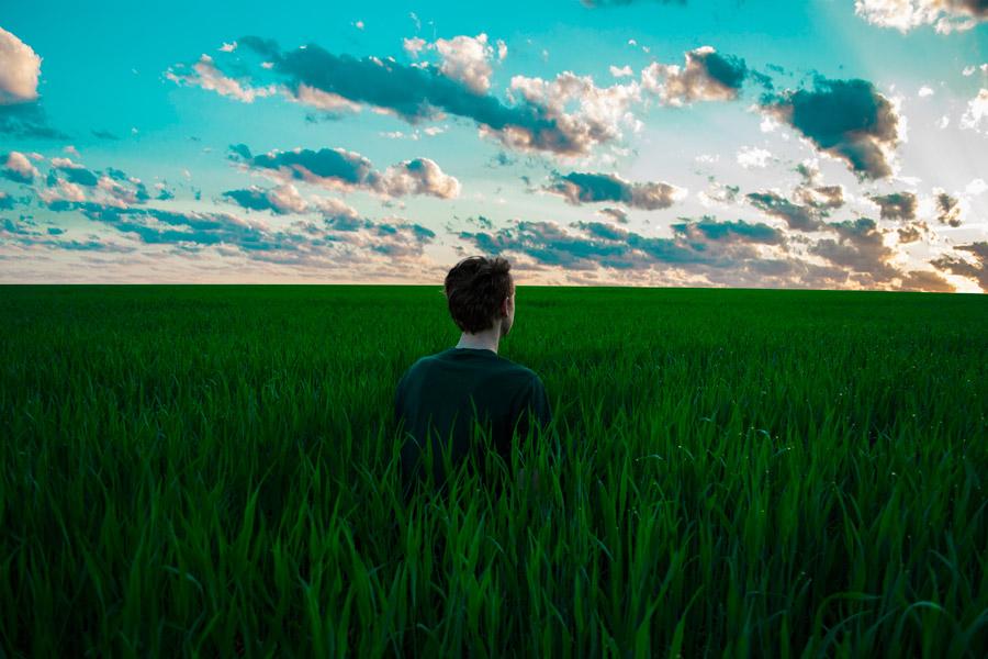 フリー写真 生い茂った牧草の中にいる男性