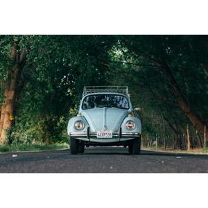 フリー写真, 乗り物, 自動車, フォルクスワーゲン, フォルクスワーゲン・ビートル