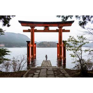 フリー写真, 風景, 建造物, 建築物, 鳥居, 神社, 平和の鳥居, 人と風景, 日本神道, 後ろ姿, 湖, 日本の風景, 神奈川県
