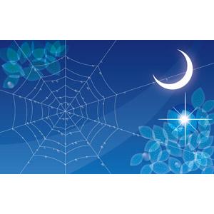 フリーイラスト, ベクター画像, EPS, 背景, 夜, 月, 三日月, 葉っぱ, 蜘蛛の巣(クモの巣), 水滴(雫)