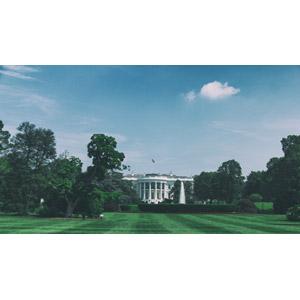フリー写真, 風景, 建造物, 建築物, ホワイトハウス, 政治, 庭園, 青空, アメリカの風景, ワシントンD.C.