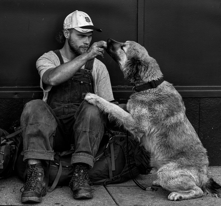 フリー写真 ホームレス男性と犬