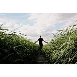 フリー写真, 人物, 男性, 後ろ姿, 手を広げる, 人と風景, 草むら, 小道