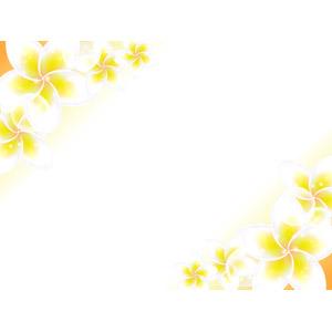 フリーイラスト, ベクター画像, AI, 背景, フレーム, 対角フレーム, 植物, 花, プルメリア, 南国