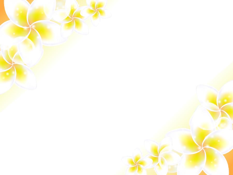 フリーイラスト プルメリアの花の飾り枠