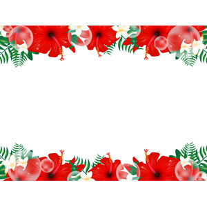 フリーイラスト, ベクター画像, AI, 背景, フレーム, 上下フレーム, 植物, 花, プルメリア, ハイビスカス, 南国