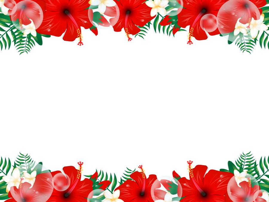 フリーイラスト ハイビスカスとプルメリアの飾り枠