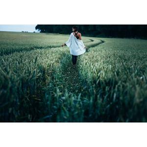 フリー写真, 人物, 女性, 外国人女性, イギリス人, 後ろ姿, 人と風景, 畑, 麦(ムギ), 作物, 穀物, 田舎