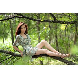 フリー写真, 人物, 女性, 外国人女性, 女性(00252), ルーマニア人, 座る(木), ワンピース, 人と風景, 森林