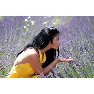 フリー写真, 人物, 女性, 外国人女性, 女性(00241), ルーマニア人, 匂いを嗅ぐ, 人と花, 植物, 花, ラベンダー, 紫色の花, 花畑, 横顔