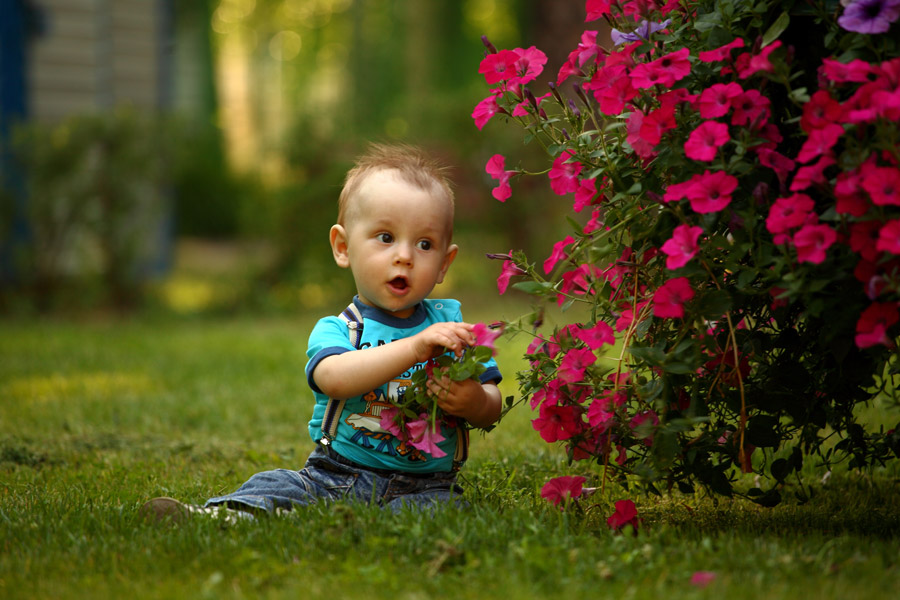 フリー写真 花の前に座っている外国の赤ちゃん