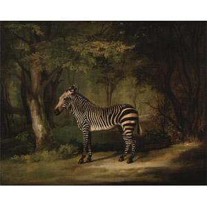 フリー絵画, ジョージ・スタッブス, 動物画, 哺乳類, 馬(ウマ), シマウマ