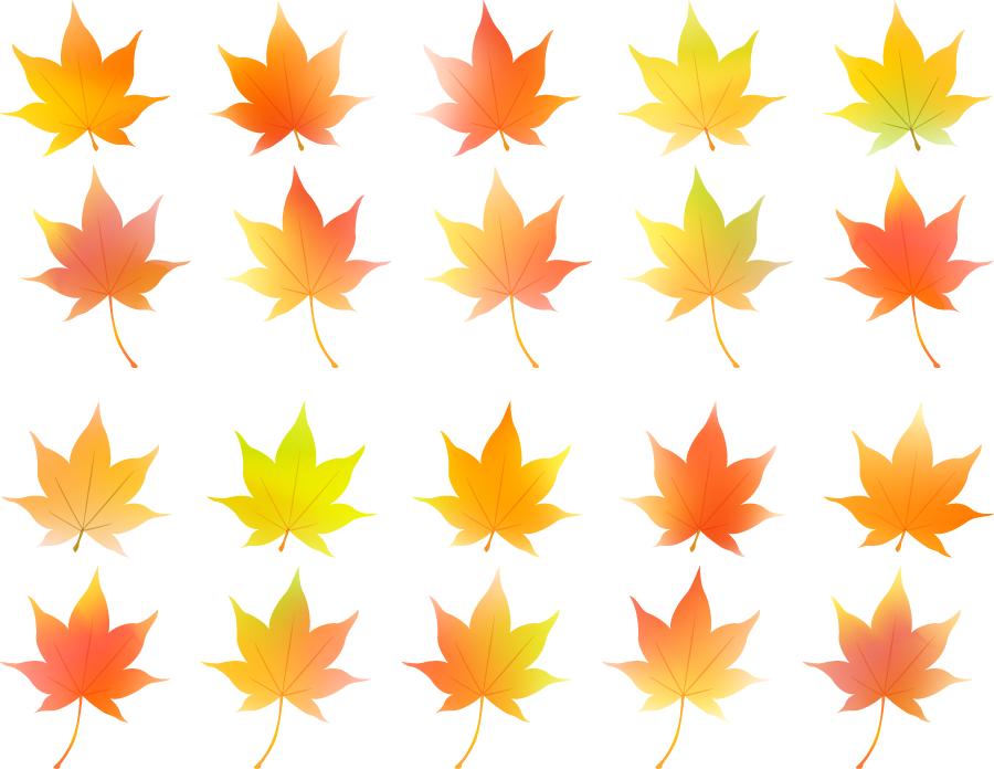 フリーイラスト 紅葉したもみじの葉っぱのセット